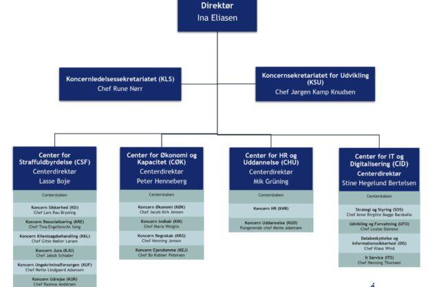 Organisationsdiagram direktoratet