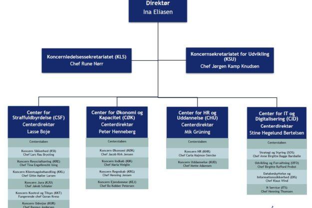 Organisationsdiagram for direktoratet